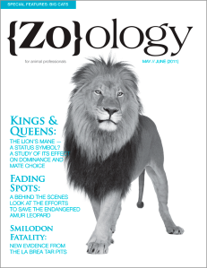 Zoology Magazine Cover Design