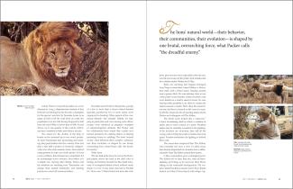 Zoology Magazine Spread 3