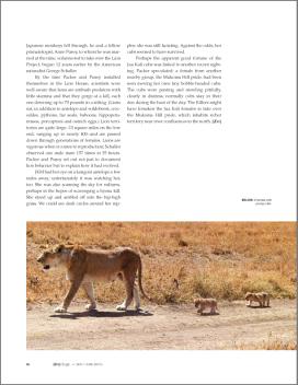 Zoology Magazine Spread 5