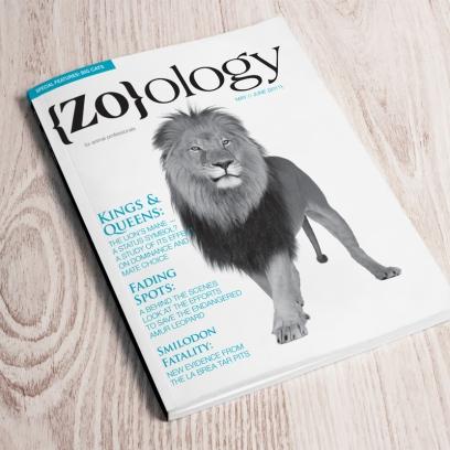 {Zo}ology Magazine
