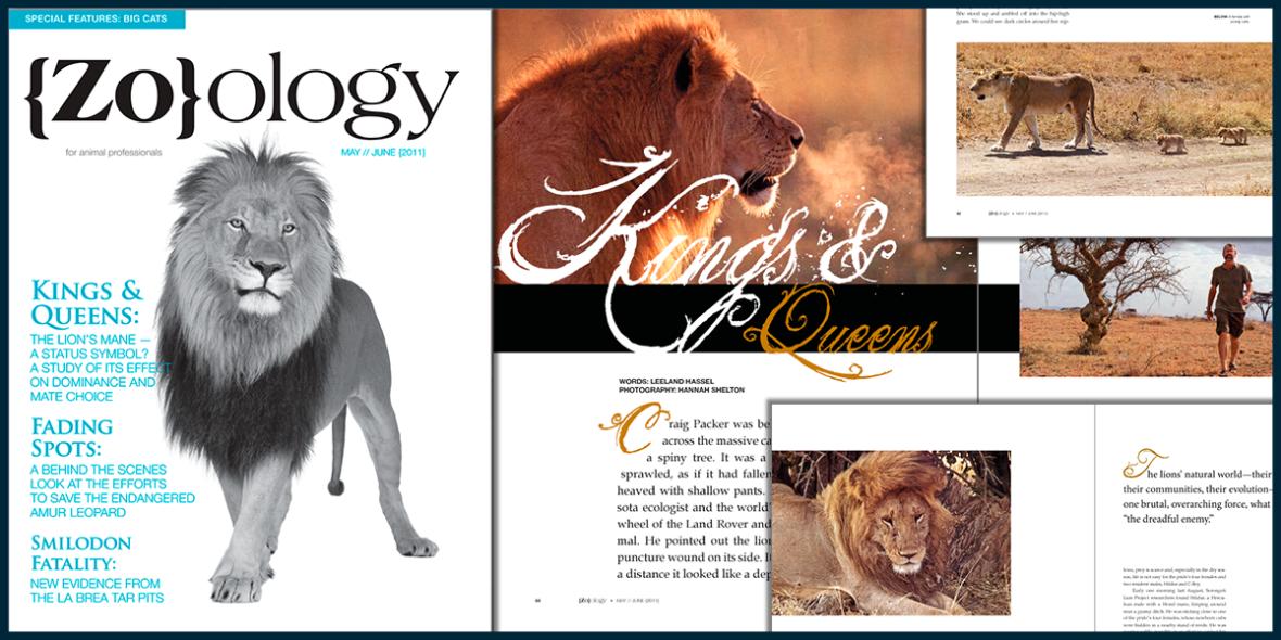 Zoology Magazine Design